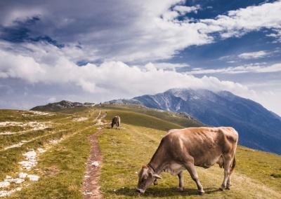 Krajobraz – Włochy, Alpy